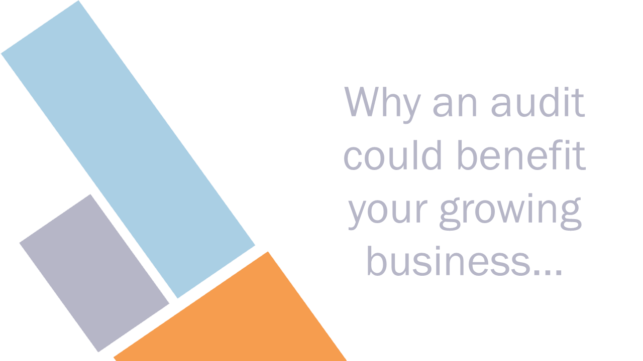 audit for growing businesses